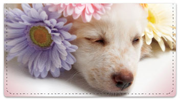 Pups in Bloom 3 Checkbook Cover
