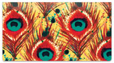 Feather Frenzy Checkbook Cover