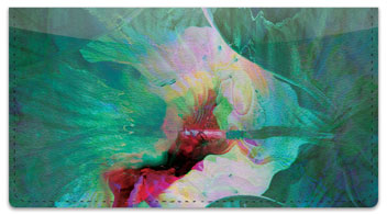 Floral Abstracts 2 Checkbook Cover