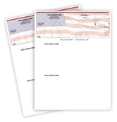 American Flag Microsoft Money Checks