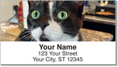 Pet Cat Address Labels