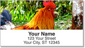 Rooster & Hen Address Labels
