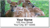 Baby Animal Address Labels