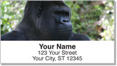 Safari Animal Address Labels