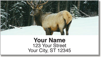 Elk Address Labels