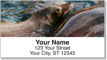 Sea Lion Address Labels