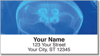 Jellyfish Address Labels