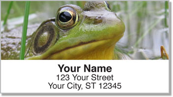 Frog Address Labels