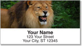 Lion Address Labels