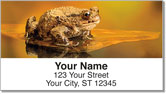Toad Address Labels