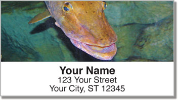Freshwater Game Fish Address Labels