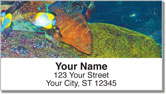 Blue Dot Grouper Address Labels