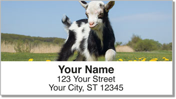 Baby Goat Address Labels