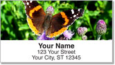 Butterfly & Moth Address Labels