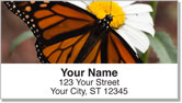Monarch Butterfly Address Labels