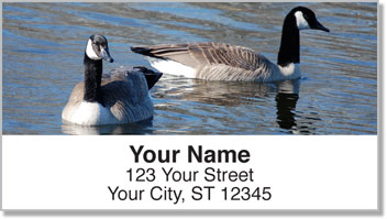 Canada Geese Address Labels