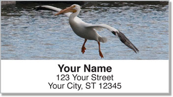 Pelican Address Labels