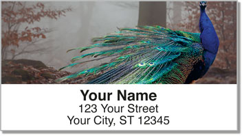 Colorful Peacock Address Labels