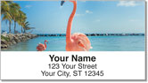 Pink Flamingo Address Labels