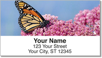 Milkweed Butterfly Address Labels