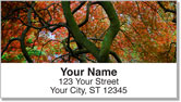 Colors of Fall Address Labels
