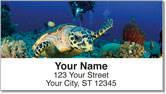 Scuba Diving Address Labels
