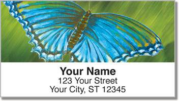 Colored Wings Address Labels