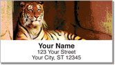 Zoo Animal Address Labels