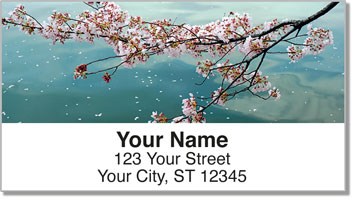 Cherry Blossom Address Labels