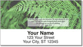 Holy Scripture Address Labels
