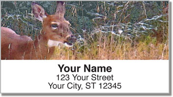 Watercolor Deer Address Labels