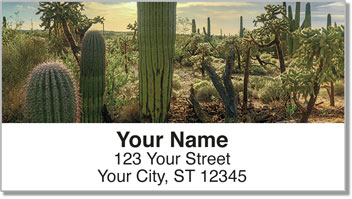 Desert Scenery Address Labels