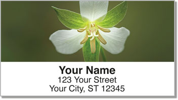 Trillium Address Labels