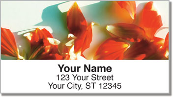 Dahlia Petal Address Labels