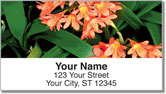 Tropical Flower Address Labels