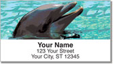 Marine Mammal Address Labels