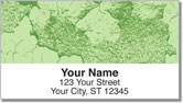 Cracked Paint Address Labels