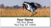 Exotic Bird Address Labels
