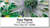 Thistle Address Labels