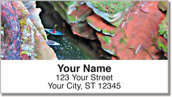 Sea Cave Address Labels