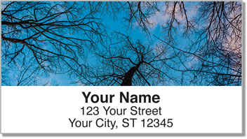 Tree Light Address Labels