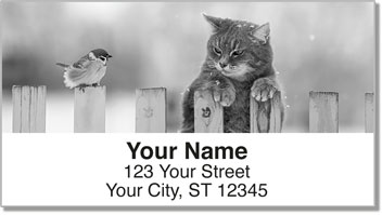 Nocturnal Kitty Address Labels