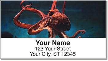 Octopus Address Labels