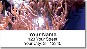 Sea Anemone Address Labels