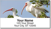 White Ibis Address Labels