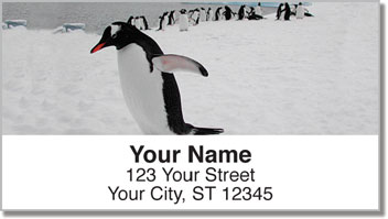 Animals of Antarctica Address Labels