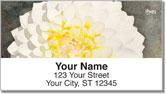 Floral Series 5 Address Labels