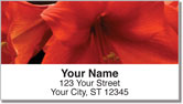 Grissom Floral Address Labels