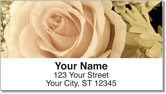 Beautiful Rose Address Labels
