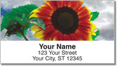 Bulone Bloom Address Labels